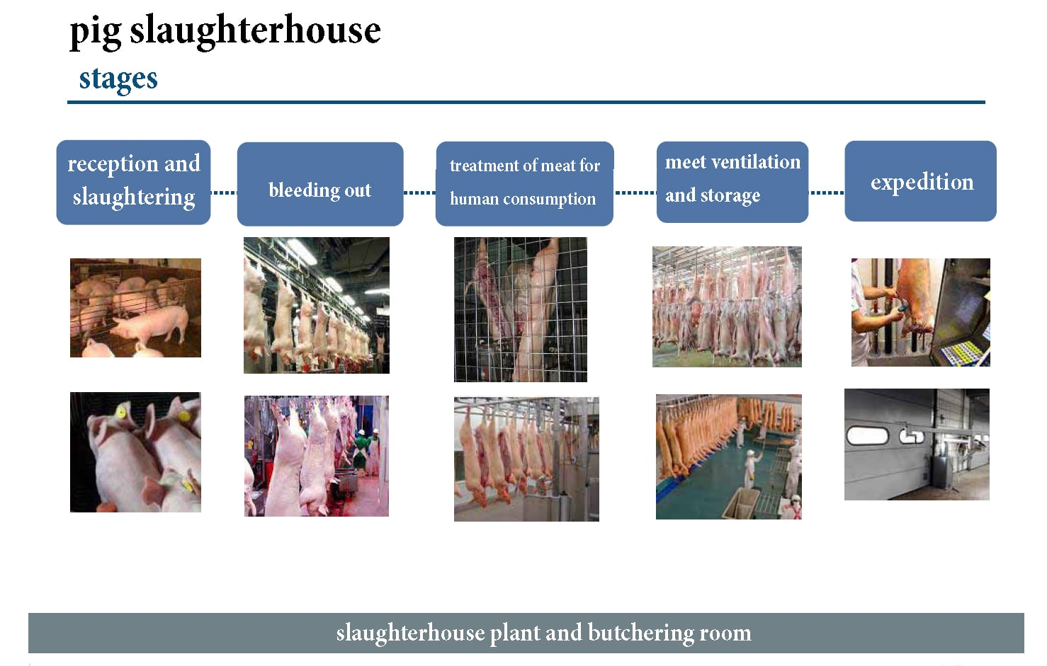 EUROGAN ENGINEERING Slaughterhouses